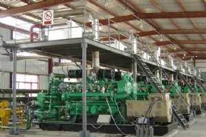 CHP/Cogeneration Power Plant-3
