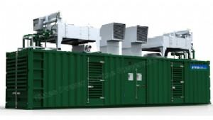 CHP/Cogeneration Power Plant-1