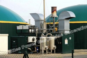 CHP/Cogeneration Power Plant-7